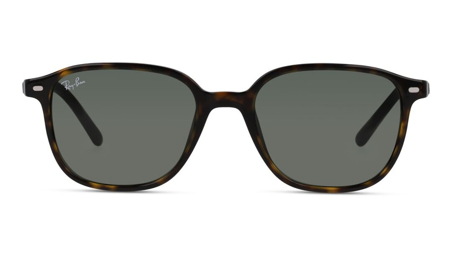 Ray-Ban Leonard RB 2193 (902/32) Sunglasses Green / Havana