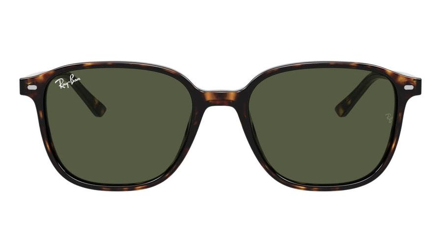 Ray-Ban Leonard RB 2193 Men's Sunglasses Green/Tortoise Shell