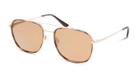 Floridian (C10) Sunglasses Gold / Tortoise Shell