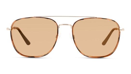 Floridian Unisex Sunglasses Gold / Tortoise Shell