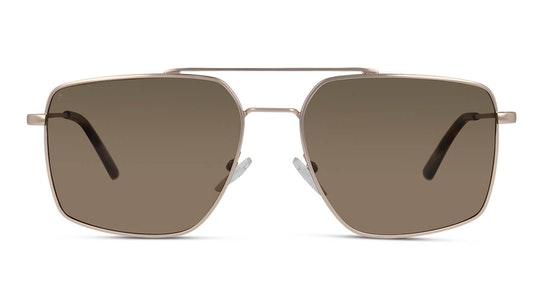The Oslo Men's Sunglasses Brown / Gold