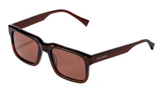 Inwood HINW21WWX0 Unisex Sunglasses Brown / Brown