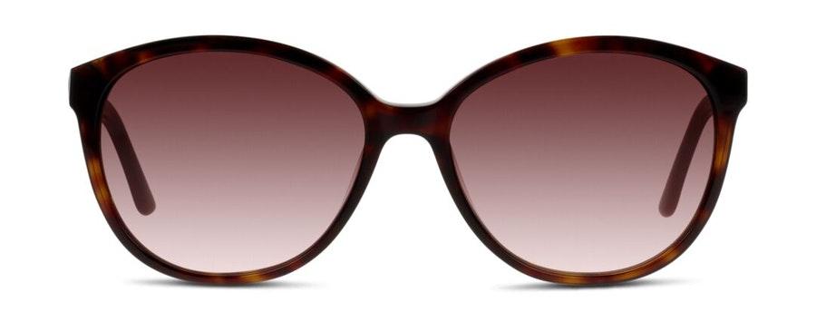 C-Line CN EF08 Women's Sunglasses Brown / Havana