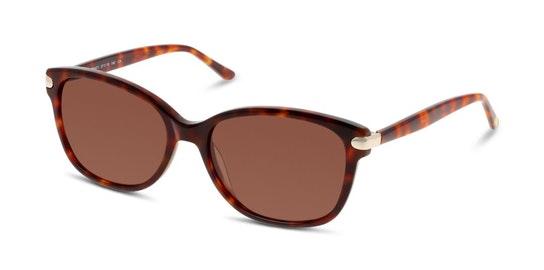 CN EF12 Women's Sunglasses Brown / Havana