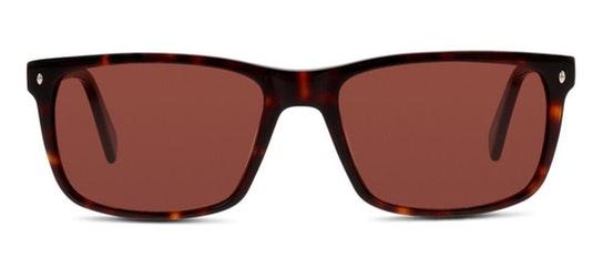 CN EM23 Men's Sunglasses Brown / Tortoise Shell