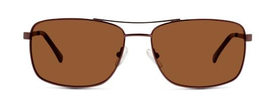 FM05 Women's Sunglasses Brown / Brown