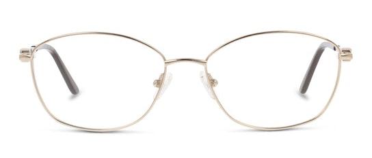 CL FF10 Women's Glasses Transparent / Gold