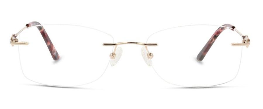 C-Line CL FF15 Glasses Gold