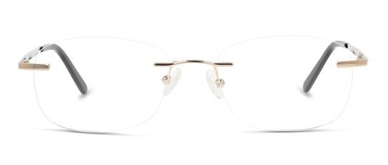 CL FM05 Men's Glasses Transparent / Gold