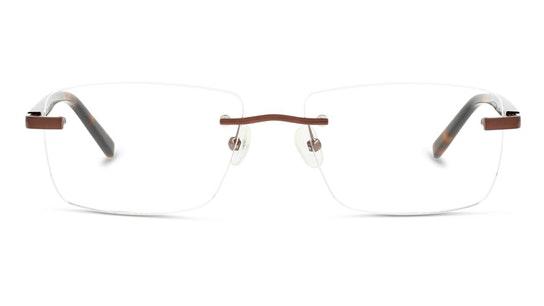 CL HM04 (Large) Men's Glasses Transparent / Brown