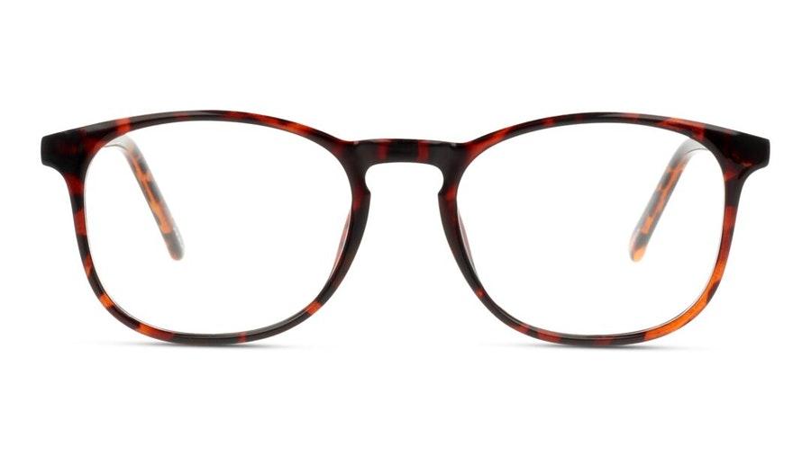 Seen SN IM08 Men's Glasses Tortoise Shell