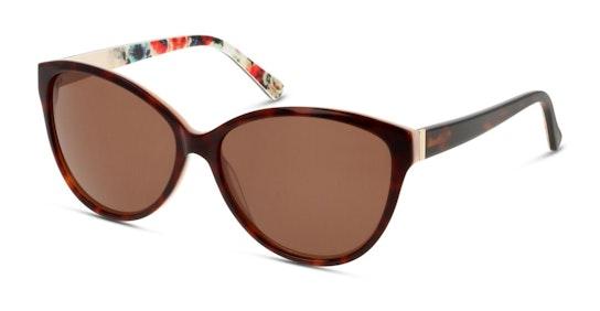 CN IF05 Women's Sunglasses Brown / Brown