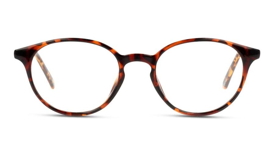Seen SN JF01 Women's Glasses Tortoise Shell