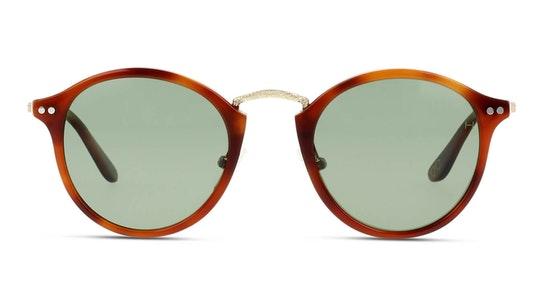 HS JM01 Men's Sunglasses Green / Tortoise Shell