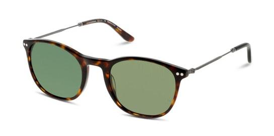 HS HM01 Unisex Sunglasses Green / Tortoise Shell
