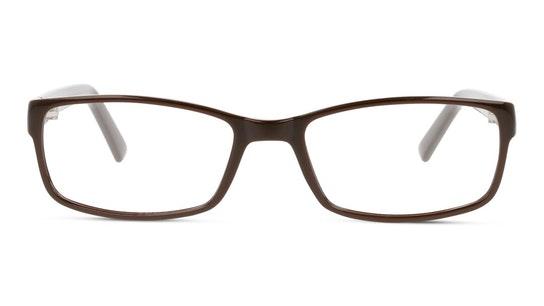 SN OM0005 Men's Glasses Transparent / Brown