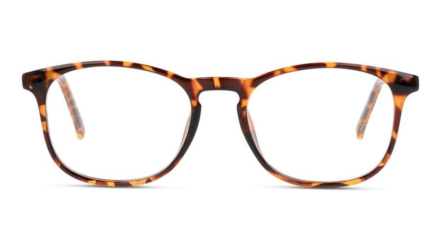 Seen SN OU5003 Men's Glasses Havana