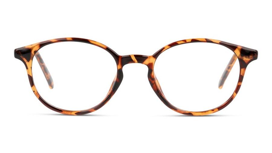 Seen SN OU5006 Women's Glasses Havana