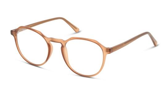 SN OU5008 Men's Glasses Transparent / Brown