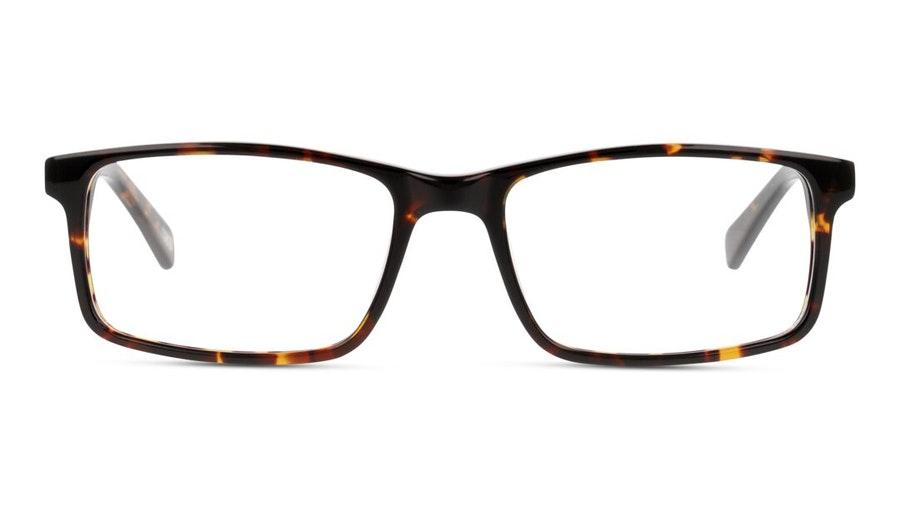 DbyD Life DB OM0022 (HH00) Glasses Havana
