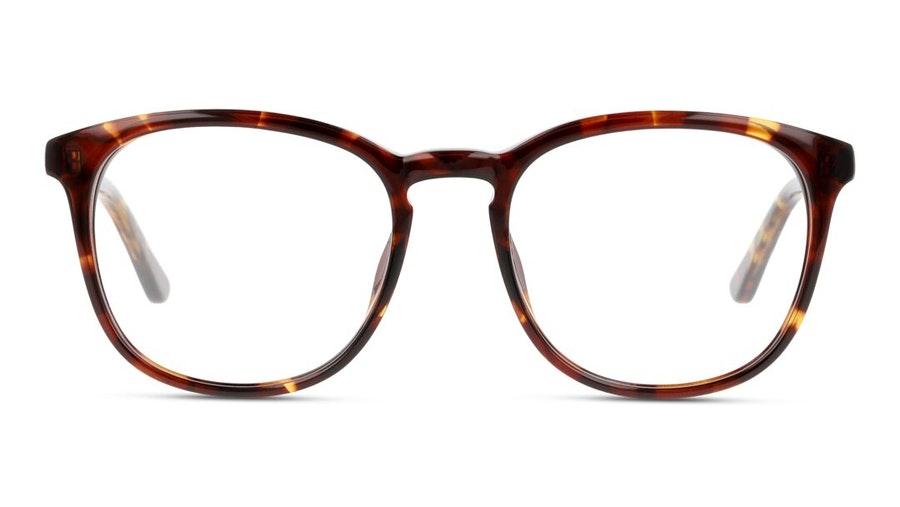 DbyD DB OF0034 (HH00) Glasses Havana