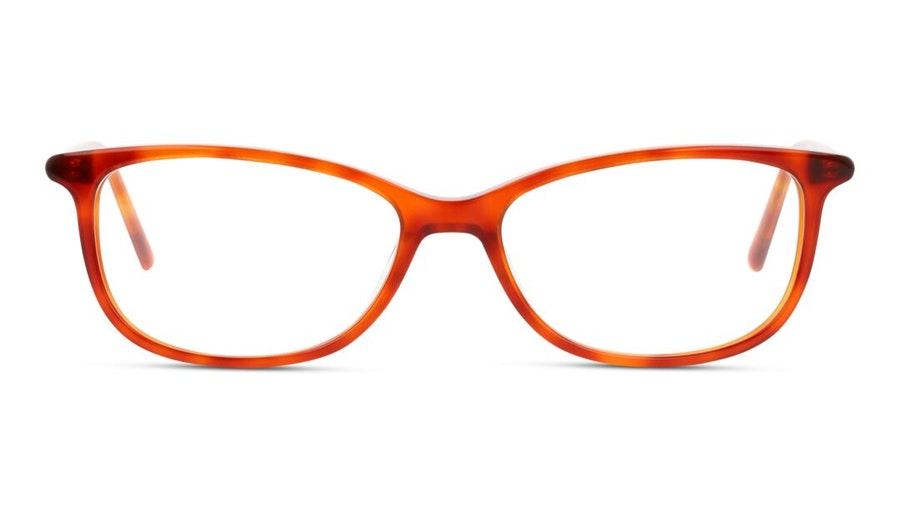 DbyD DB OF5019 (OO00) Glasses Havana