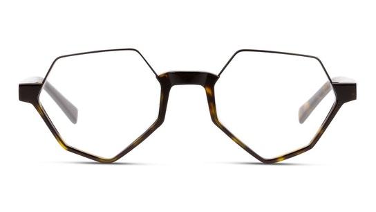 MN OM0036 Men's Glasses Transparent / Havana