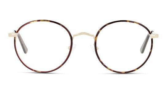 UNOM0212 Men's Glasses Transparent / Brown