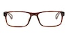 CK Jeans CKJ 19509 Men's Glasses Brown