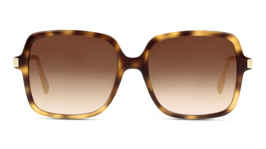 LO 641S Women's Sunglasses Brown / Tortoise Shell