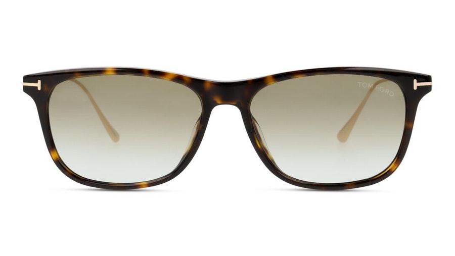 Tom Ford Caleb FT 813 (52G) Sunglasses Brown / Havana