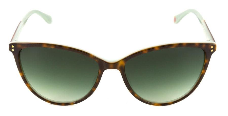 Ted Baker Delta TB 1424 Women's Sunglasses Grey/Havana