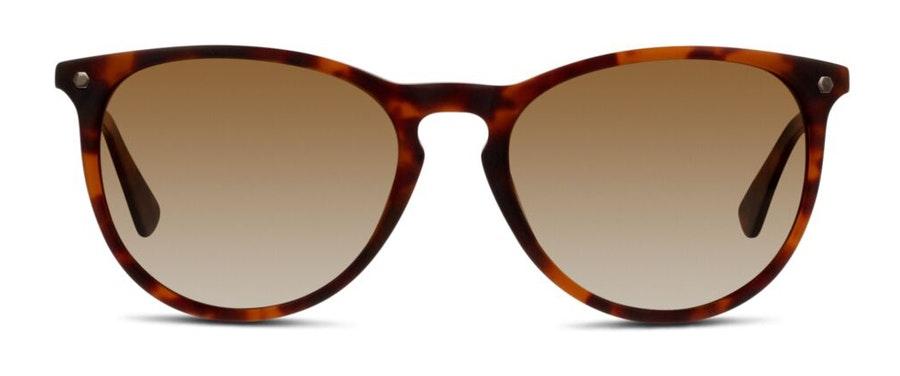 In Style EU01P Women's Sunglasses Brown/Tortoise Shell
