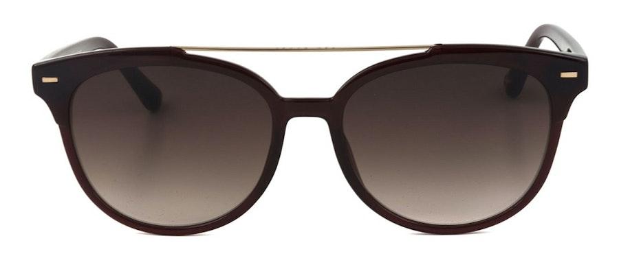 Ted Baker Solene TB1539 Women's Sunglasses Brown/Red