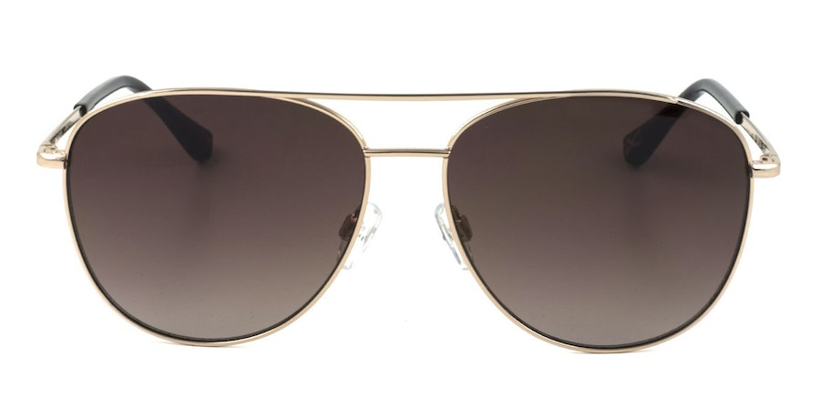 Ted Baker Demi TB 1524 Women's Sunglasses Brown / Gold