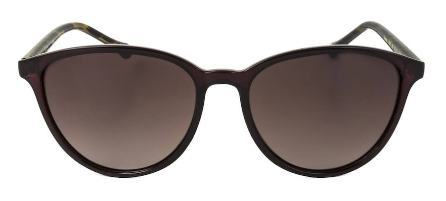 Ted Baker Tierney TB 1442 Women's Sunglasses Brown/Violet