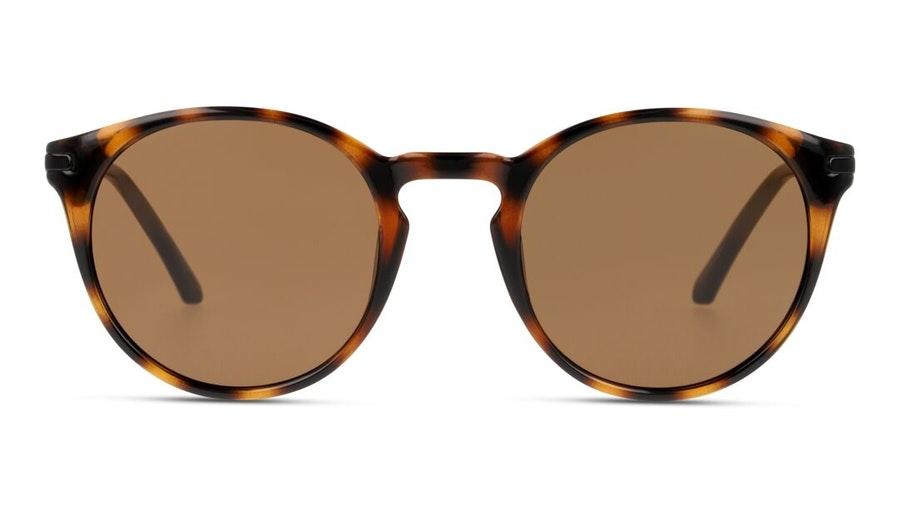 CK Jeans CKJ 20701SGV Men's Sunglasses Brown / Tortoise Shell