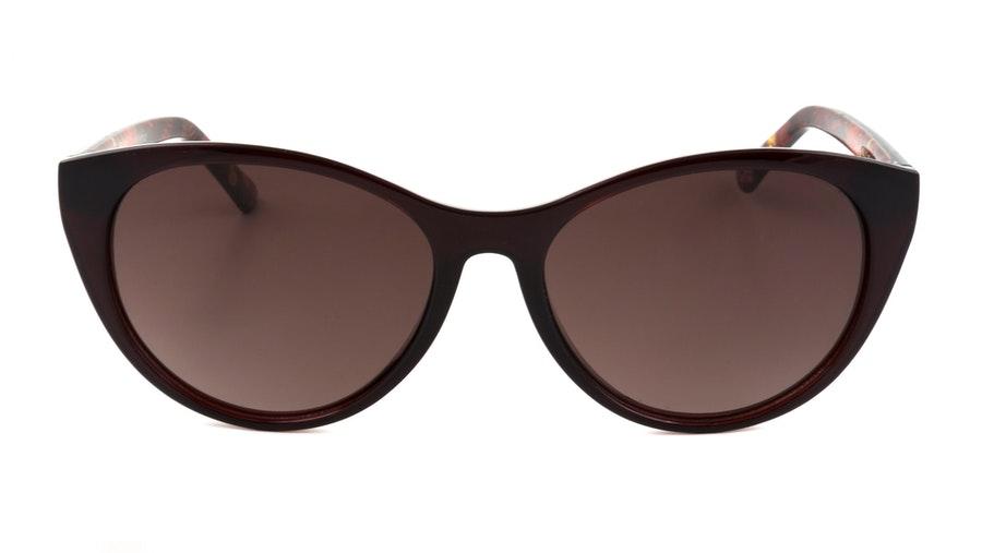 Ted Baker Lisbet TB 1583 Women's Sunglasses Brown/Red
