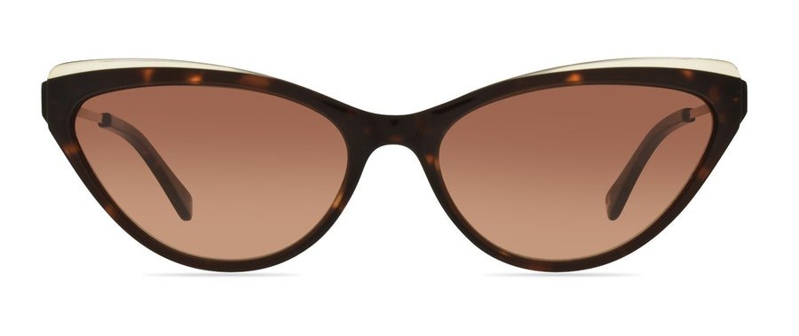 Ted Baker Emmy TB 1569 Women's Sunglasses Brown/Tortoise Shell