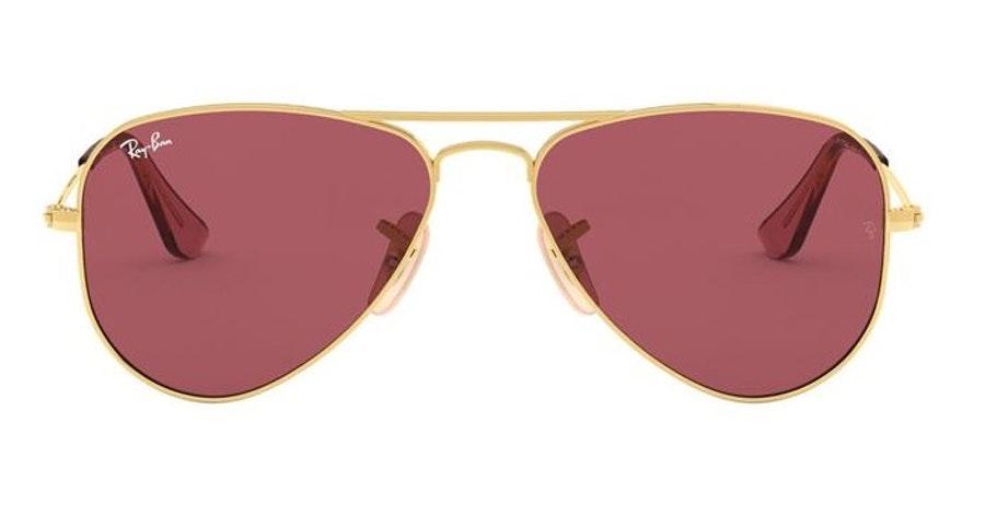 Ray-Ban Juniors RJ 9506S Children's Sunglasses Red/Gold
