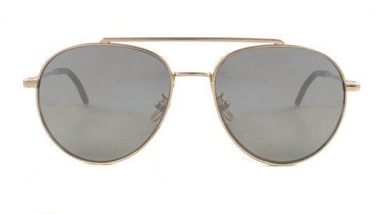 SML 009 (300X) Sunglasses Grey / Gold