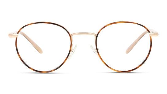 Java 1 Women's Glasses Transparent / Tortoise Shell