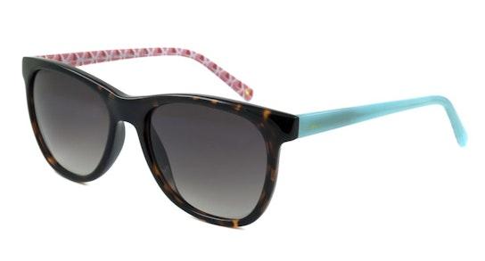 Portabello JS 7052 (120) Sunglasses Grey / Tortoise Shell