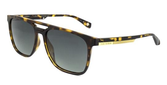 Holt TB 1494 (173) Sunglasses Green / Havana