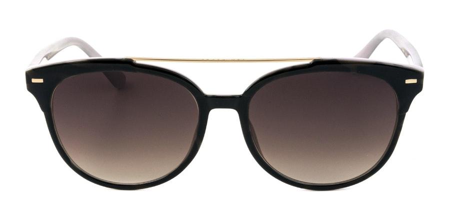 Ted Baker Solene TB 1539 Women's Sunglasses Brown / Tortoise Shell