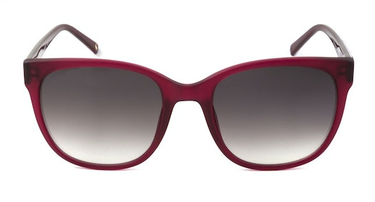 Woolacombe JS 7054 (227) Sunglasses Grey / Red