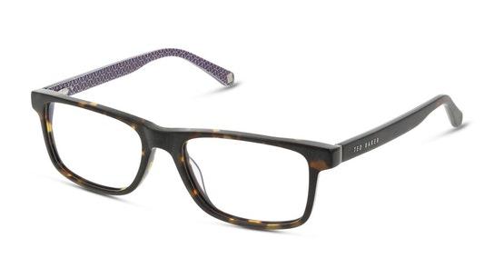 Reel TB 8220 (145) Glasses Transparent / Tortoise Shell