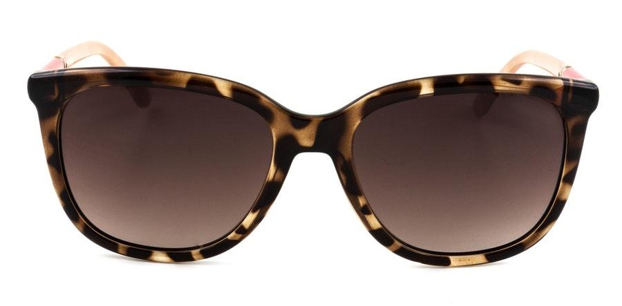 Joules Ashdown JS 7063 Women's Sunglasses Brown / Tortoise Shell