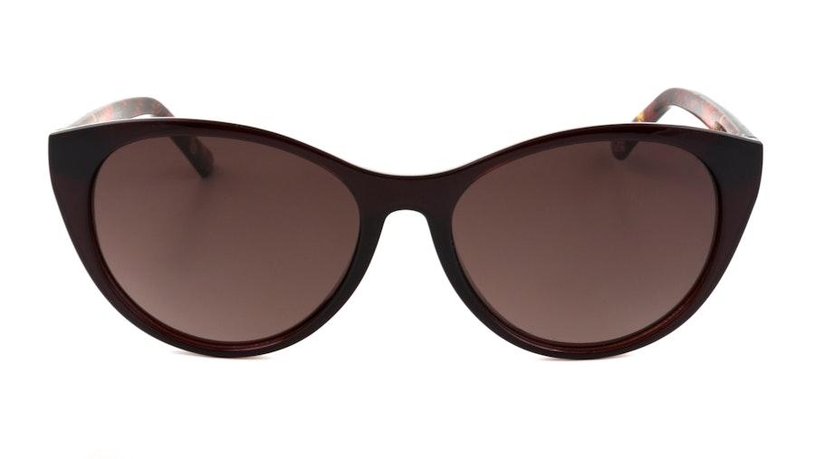 Ted Baker Lisbet TB 1583 Women's Sunglasses Brown / Red