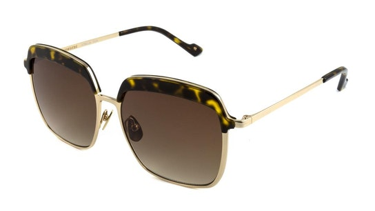 Setlla (482) Sunglasses Brown / Gold